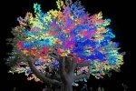 tree-of-tc3a9nc3a9rc3a9-at-night-burning-man-2017_orig.jpg